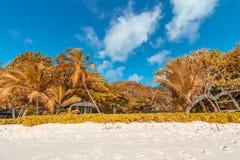 Schöner Strand von Seychellen Autumn Colors Lizenzfreie Stockbilder