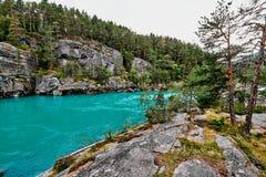 Schöner Türkisfluß in den Bergen umgeben durch Bäume in Norwegen Lizenzfreies Stockbild