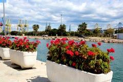 Schöner Tag auf dem Dock mit Töpfen stockfotografie