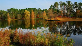 Schöner Tag des Herbstes in den hellen Farben Stockfotos