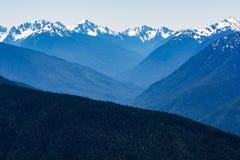 Schöner Tag am Hurrikan Ridge, Washington, US Lizenzfreies Stockbild