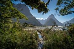 Schöner Tag mit Sonnenschein bei Milford Sound, Neuseeland stockfotos