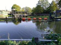 Sch?ner Tag Vereinigtes K?nigreich Flussgartenfriedens-Londons, lizenzfreie stockfotos