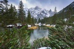 Schöner Tatra-Mountain View am Fisch-Nebenfluss Lizenzfreie Stockfotos