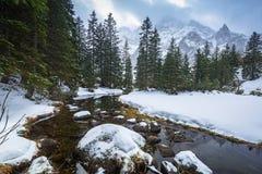 Schöner Tatra-Mountain View am Fisch-Nebenfluss Lizenzfreie Stockbilder