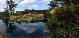 Schöner Teich Stockbild