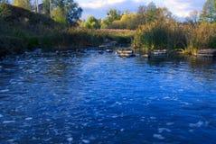 Schöner Teich am Nachmittag Lizenzfreie Stockfotografie