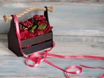Schöner Topf Blumen eingewickelt im roten Papier, Geschenk in einem hölzernen Korb Lizenzfreie Stockbilder