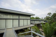 Schöner tropischer Garten Lizenzfreies Stockbild