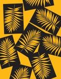 Schöner tropischer Palme-Blatt-Schattenbild-Hintergrund Auch im corel abgehobenen Betrag Stockbild