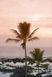 Schöner tropischer Strand Lizenzfreies Stockfoto