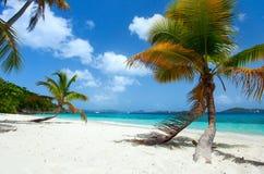 Schöner tropischer Strand bei Karibischen Meeren Stockbild