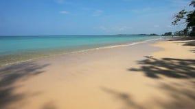 Schöner tropischer Strand Feld des grünen Grases gegen einen blauen Himmel mit wispy weißen Wolken stock footage