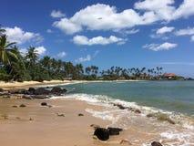 Schöner tropischer Strand mit großen Wellen Sri Lanka lizenzfreies stockbild