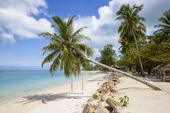 Schöner tropischer Strand, Palme und Meerwasser in der Insel Koh Phangan, Thailand Lizenzfreies Stockfoto
