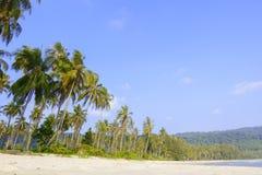 Schöner tropischer Strand- und Kokosnussbaum rudern auf Strand an KOH k stockfotos