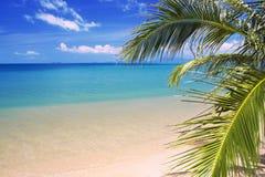 Schöner tropischer Strand und Meer stockbilder