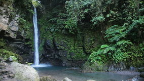 Schöner tropischer Wasserfall stock video footage