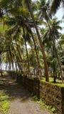 Schöner tropischer Weg lizenzfreies stockfoto