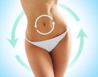Schöner und geeigneter weiblicher Körper mit Zeichnungspfeilen Stockfoto