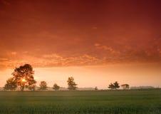 Schöner und ruhiger Sonnenaufgang. Stockbilder