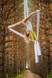 Schöner und würdevoller Trapezkünstler führt Übungen auf Luftseide durch Lizenzfreie Stockfotografie