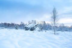 Schöner verschneiter Winter Forest Landscape Background With An altes C Lizenzfreies Stockbild