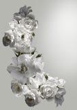 Schöner vertikaler Rahmen mit einem Blumenstrauß von weißen Rosen mit Regen fällt Schwarzweiss-Tonbild Stockbilder