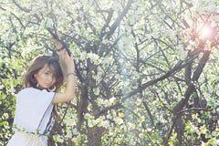 Schöner Wald des Mädchens im Frühjahr Stockbild