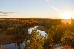 Schöner Wald im Herbst Stockfotos