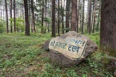 Schöner Wald, Manali Stockfotografie