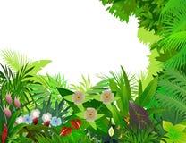 Schöner Waldhintergrund Stockfoto