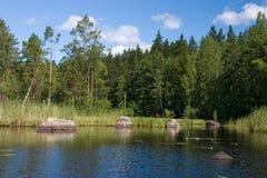Schöner Waldsee Stockfotos