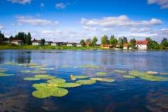 Schöner Waldsee mit Wasserlilien stockbild
