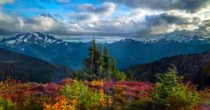 Schöner Washington Autumn Nature Scenery - Herbstlaub in Washington State lizenzfreie stockfotos