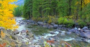 Schöner Washington Autumn Nature Scenery- - Wenatchee-Fluss lizenzfreie stockbilder