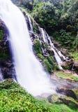 Schöner Wasserfall auf Berg stockbild