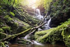 Schöner Wasserfall auf einen Felsen in Thailand Stockbild