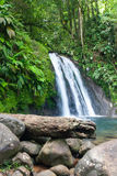 Schöner Wasserfall auf Guadeloupe-Insel Lizenzfreie Stockbilder