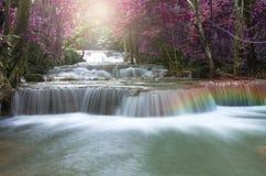 Schöner Wasserfall in der Weichzeichnung mit Regenbogen im Wald Lizenzfreie Stockbilder