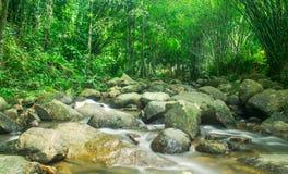 Schöner Wasserfall durch Felsen lizenzfreies stockfoto