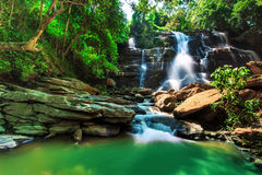 Schöner Wasserfall im Wald Lizenzfreies Stockbild