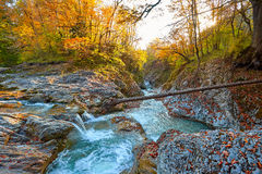 Schöner Wasserfall im Wald bei Sonnenuntergang Herbstlandschaft, gefallene Blätter Lizenzfreies Stockfoto