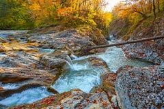 Schöner Wasserfall im Wald bei Sonnenuntergang Herbstlandschaft, gefallene Blätter Lizenzfreie Stockfotos