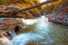 Schöner Wasserfall im Wald bei Sonnenuntergang Herbstlandschaft, gefallene Blätter Stockbild