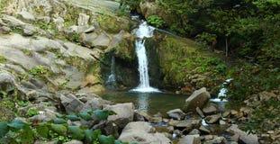 Schöner Wasserfall im Wald Ukraine Stockfotografie