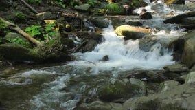 Schöner Wasserfall kommt aus einen enormen Felsen im Wald heraus stock video