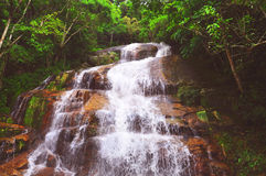 Schöner Wasserfall mitten in dem Wald Stockfotos