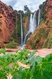 Schöner Wasserfall in Ouzoud, Azilal, Marokko Großartiger Atlas stockbilder