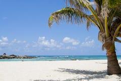Schöner weißer Strand Sand Karibischer Meere Lizenzfreie Stockfotografie